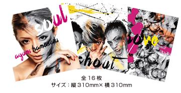 tour2013-goods-07