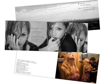 tour2013-goods-09